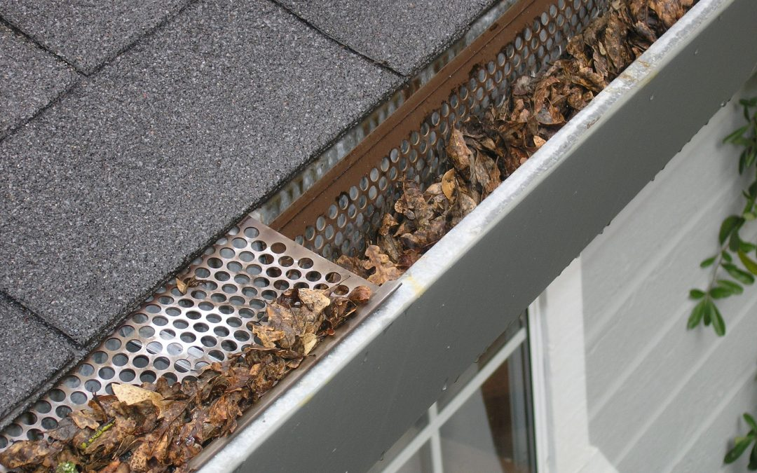 Give Your Roof A Check-Up